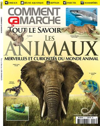 BOOKAZINE 3 - Animaux1